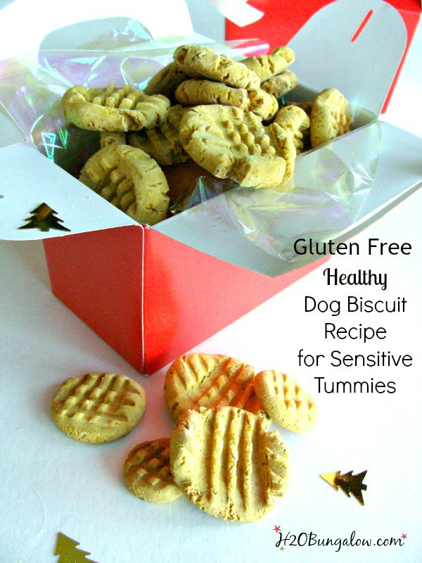 Gluten Free Dog Biscuit Recipe  Gluten Free Dog Biscuit Recipe H20Bungalow