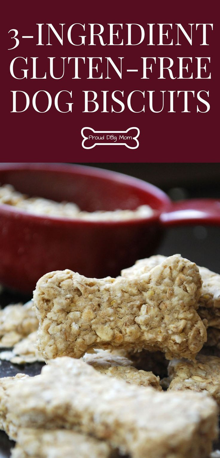 Gluten Free Dog Biscuit Recipe  100 Dog Biscuit Recipes on Pinterest