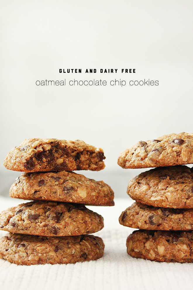 Gluten Free Oatmeal Chocolate Chip Cookies  summer harms gluten and dairy free oatmeal chocolate chip