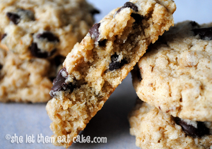 Gluten Free Oatmeal Chocolate Chip Cookies  Over 60 Gluten Free Oatmeal Cookie Recipes