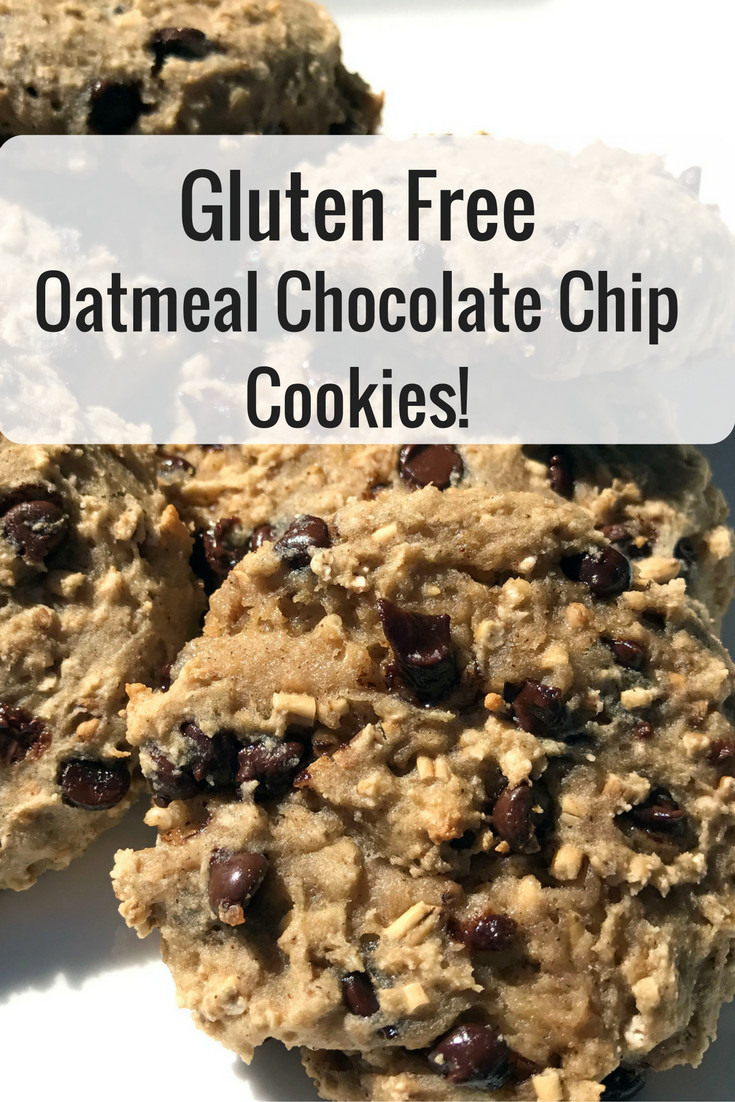 Gluten Free Oatmeal Chocolate Chip Cookies  Gluten Free Oatmeal Chocolate Chip Cookies Teachable Mommy