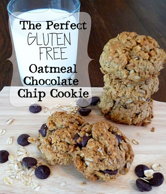 Gluten Free Oatmeal Chocolate Chip Cookies  PaperDaisyKitchen The Best Gluten Free Oatmeal Chocolate