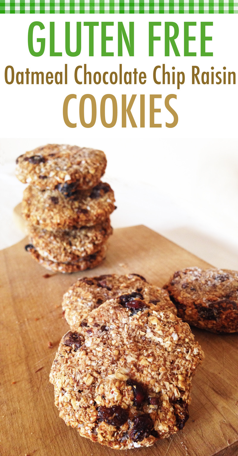 Gluten Free Oatmeal Chocolate Chip Cookies  Suzy Q Author at Better Baking BibleBetter Baking Bible