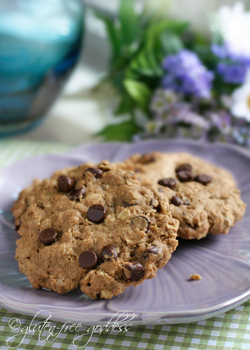 Gluten Free Oatmeal Cookies Recipe  Gluten Free Goddess Recipes Gluten Free Oatmeal Chocolate