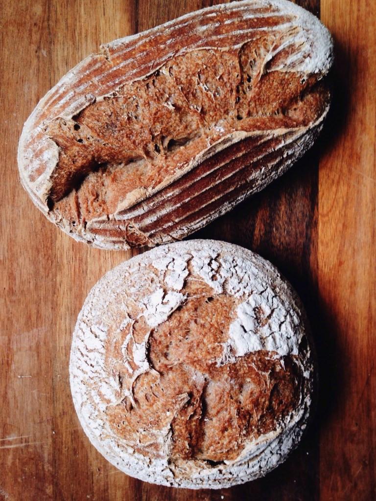 Gluten Free Sour Dough Bread  gluten free sourdough bread