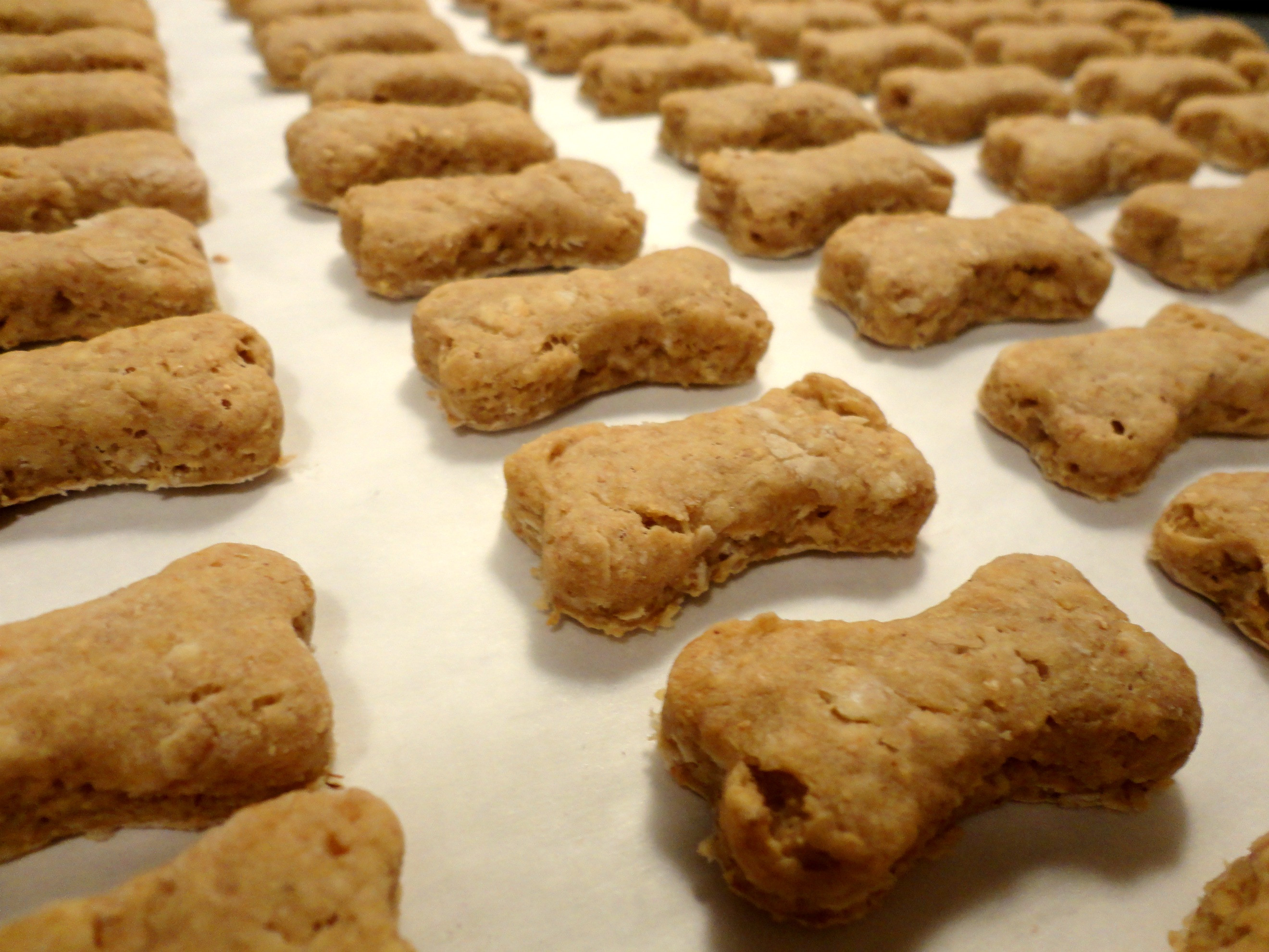 Healthy Dog Biscuit Recipe  Dog Treats Recipes