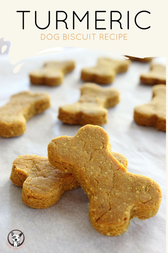 Healthy Dog Biscuit Recipe  164 best Homemade Dog Treat Recipes images on Pinterest