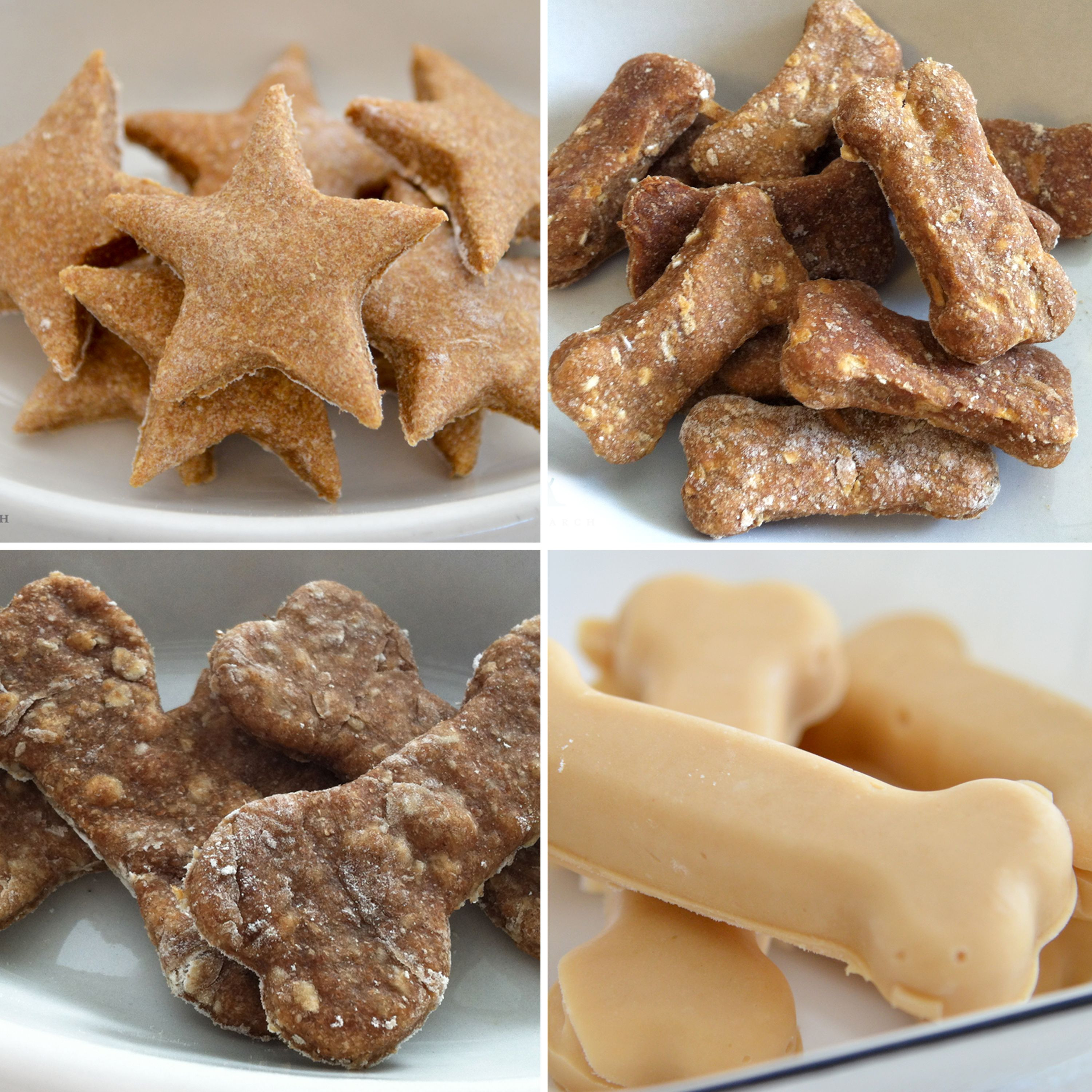 Healthy Dog Biscuit Recipe  10 Healthy Homemade Dog Treats Thats so good