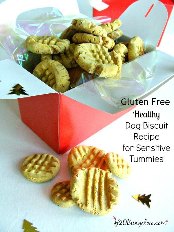 Healthy Dog Biscuit Recipe  Gluten Free Dog Biscuit Recipe H20Bungalow