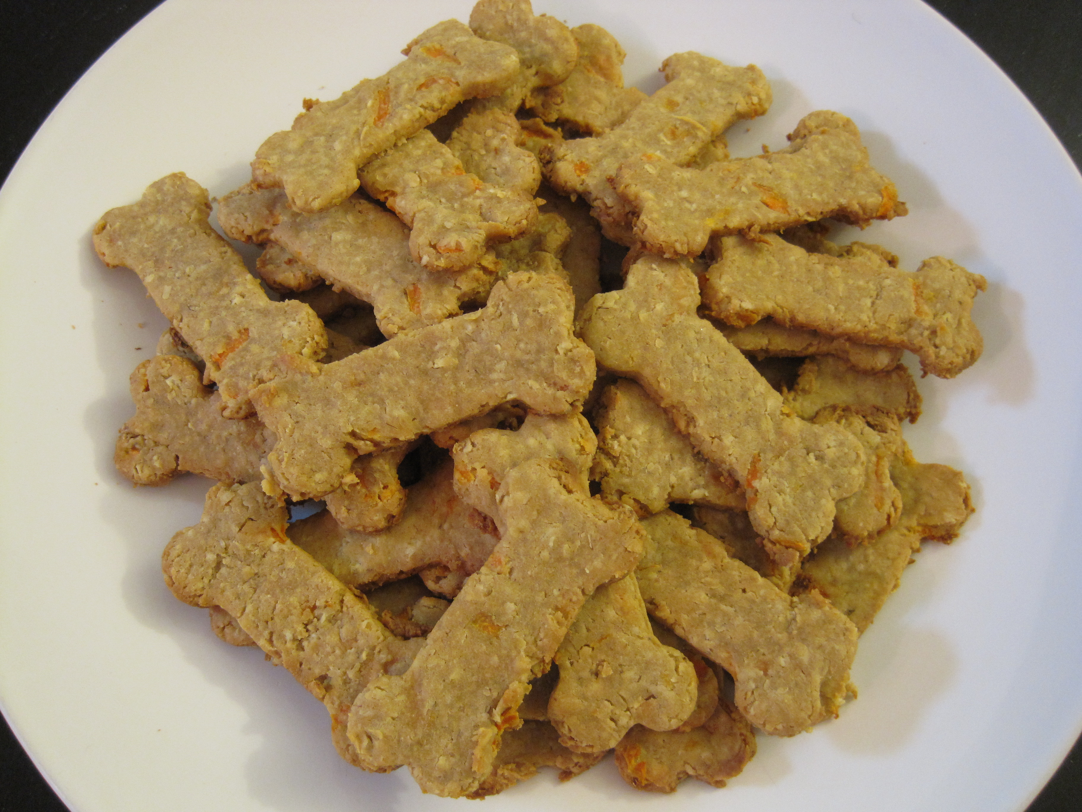 Healthy Dog Biscuit Recipe  Healthy Dog Treat Recipes 300th Post
