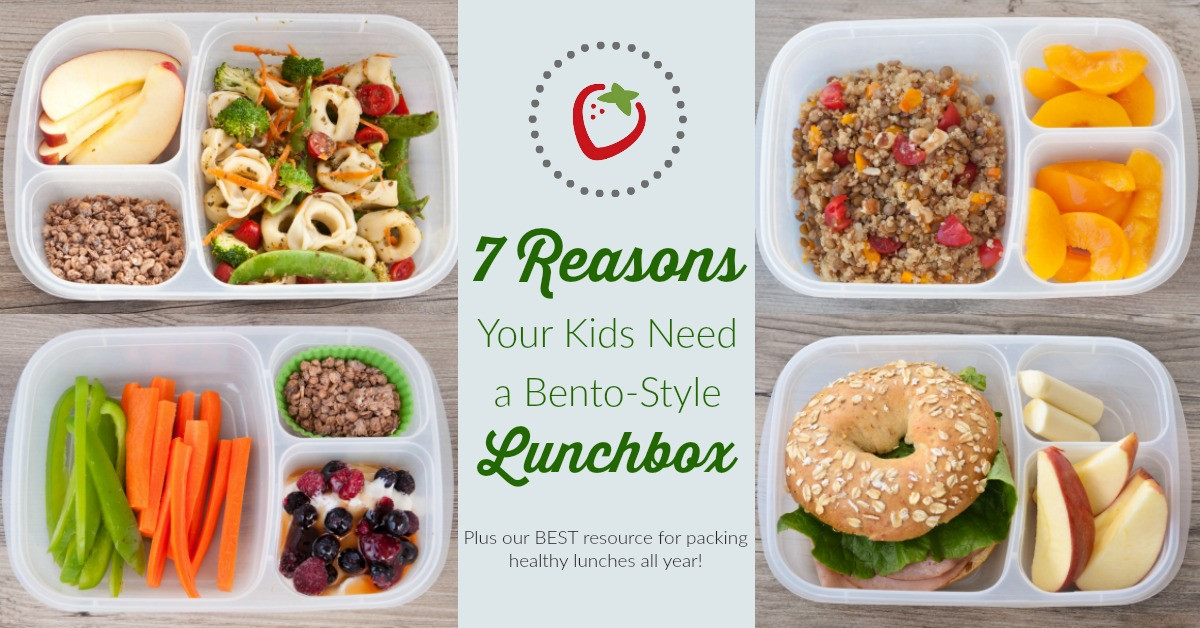 Healthy Kids Lunches  7 Reasons Why Your Kids Need a Bento Style Lunchbox
