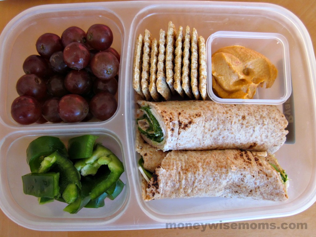 Healthy Kids Lunches  Healthy School Lunches My Kids Faves Moneywise Moms