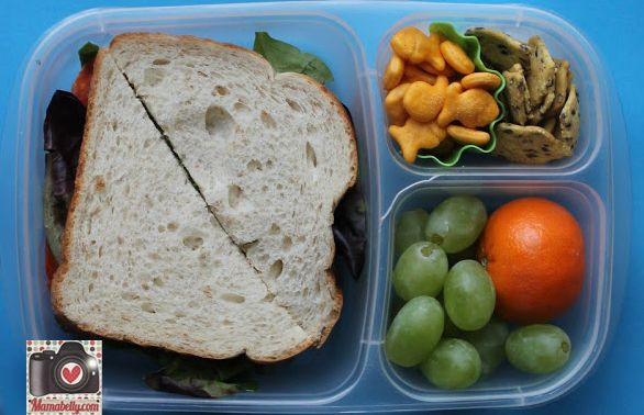 Healthy Lunches For Teens  All about packing lunch boxes for teen boys and girls