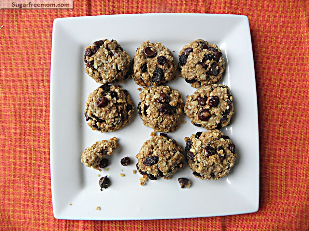 Healthy Oatmeal Cookies No Sugar  Healthy Oatmeal Raisin Cookies No Sugar Added
