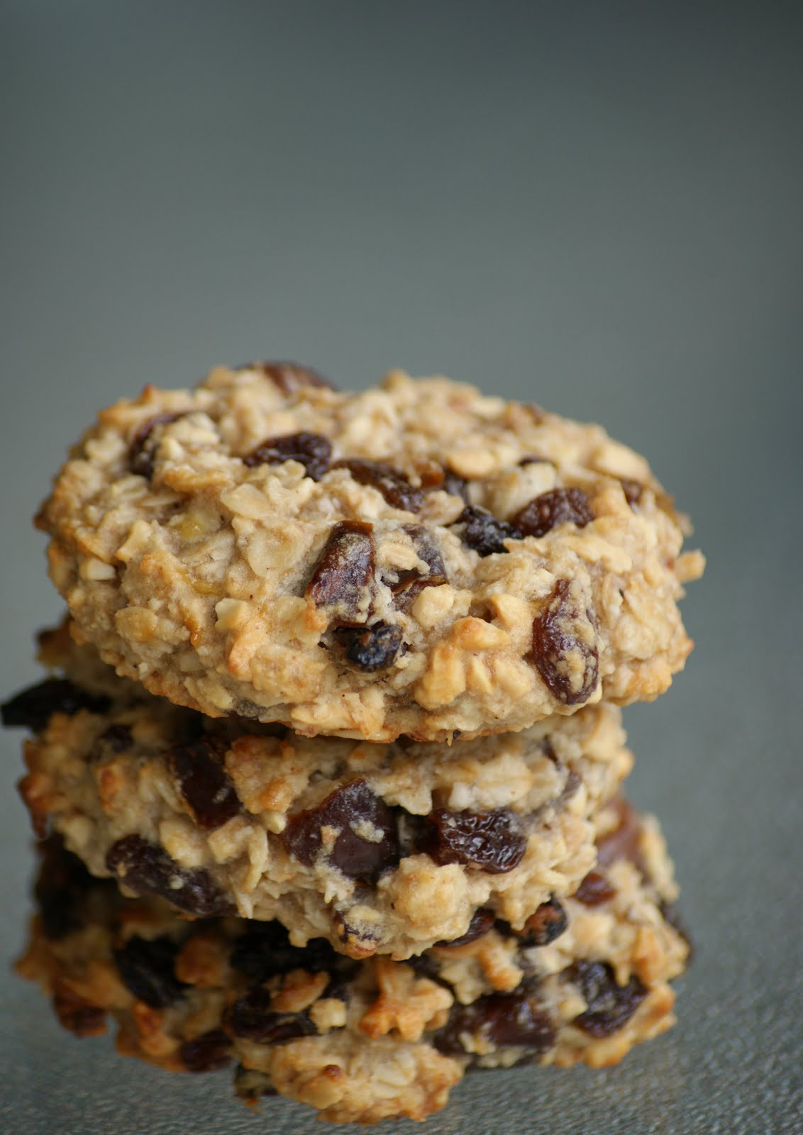 Healthy Oatmeal Cookies No Sugar  Recipes Sugar free carb free stevia healthy etc on