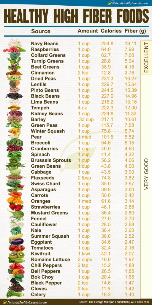 High Fiber Diet Recipes  Rough and Ready High Fiber Recipes Healthy Concepts with