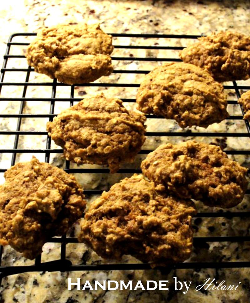 High Fiber Oatmeal Cookies  Handmade by Hilani Guilt Free Pumpkin Oatmeal Cookies