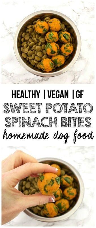 Homemade Vegan Dog Food Recipes  Best 25 Dog food recipes ideas on Pinterest