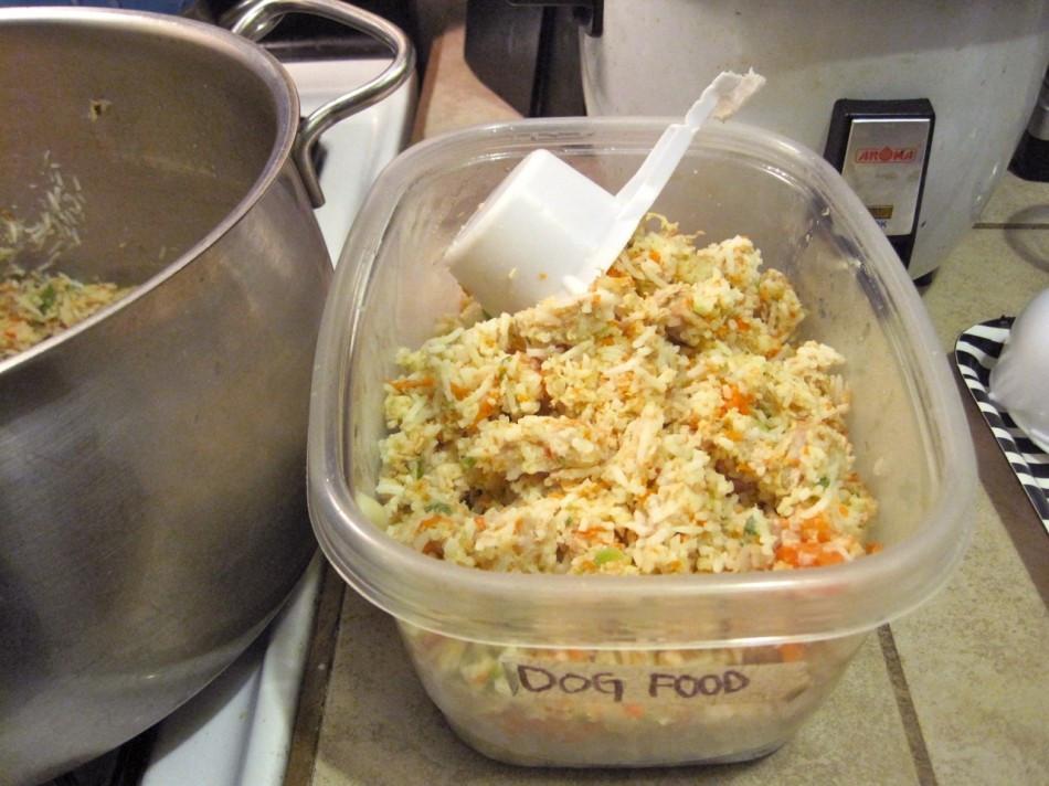 Homemade Vegan Dog Food Recipes  Dinner Recipes for Two for Kids Ve arian Ideas Veg