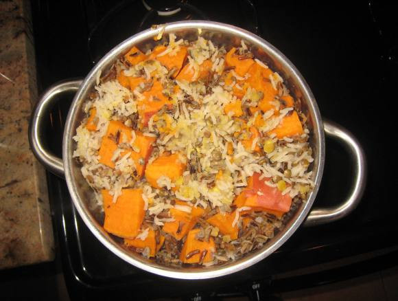 Homemade Vegan Dog Food Recipes  The Pros and Cons of a Ve arian Diet for Dogs
