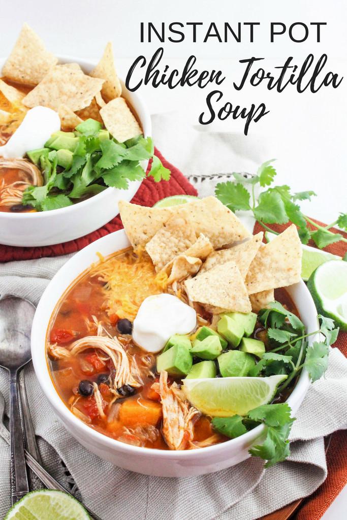 Instant Pot Chicken Recipes Healthy  Instant Pot Chicken Tortilla Soup Recipe fANNEtastic