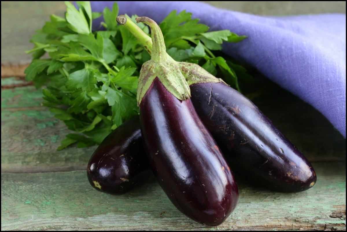 Is Eggplant Healthy  Important Health Benefits of Eggplant 8 Reasons Why You