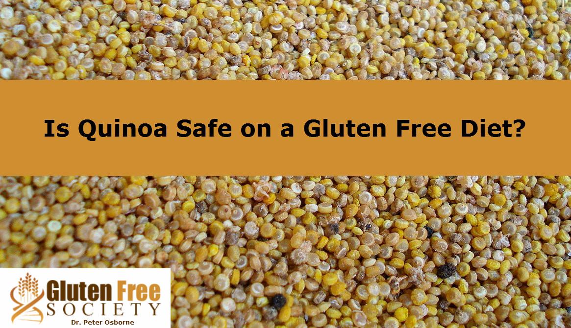 Is Quinoa Gluten Free  Is Quinoa a Safe Gluten Free Food Alternative