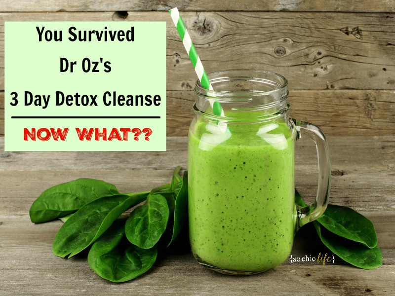 Juicing Recipes For Weight Loss Dr Oz  Dr Oz 3 Day Detox Cleanse