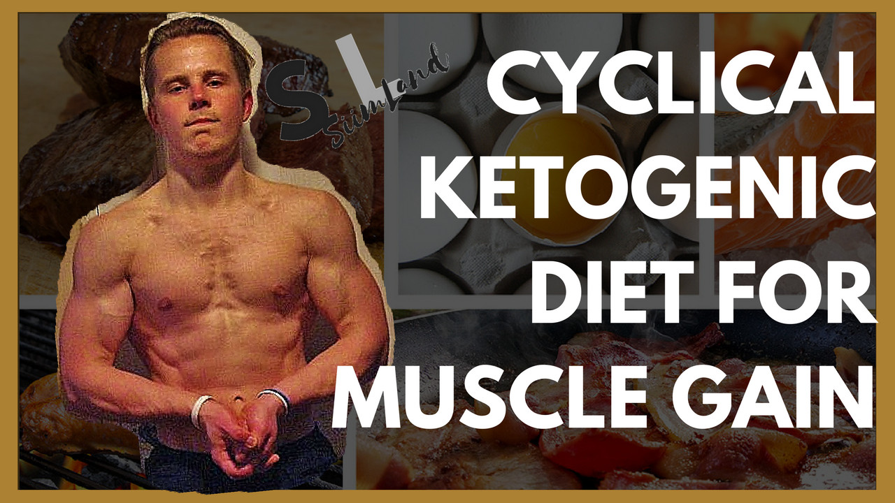 Keto Diet And Building Muscle  Is the Cyclical Ketogenic Diet for Muscle Gain or Fat Loss