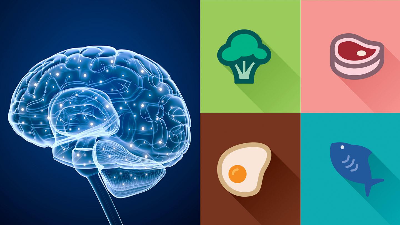 Keto Diet And Epilepsy  Epilepsy Ketogenic Diet Modified Atkins Diet