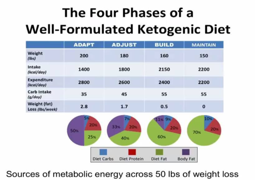 Keto Diet Percentage Chart  Is Keto High Fat or Low Fat Keto Island