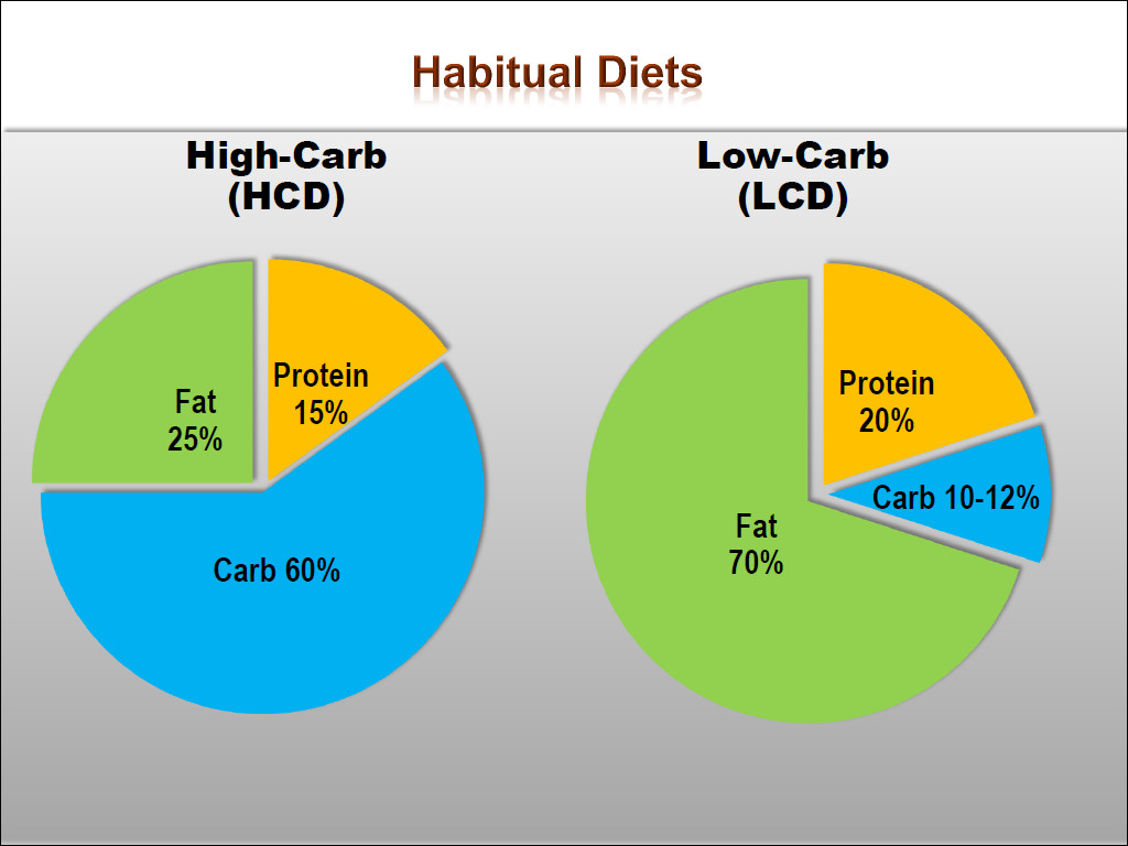Keto Diet Percentage Chart  The Emerging Science on Fat Adaptation