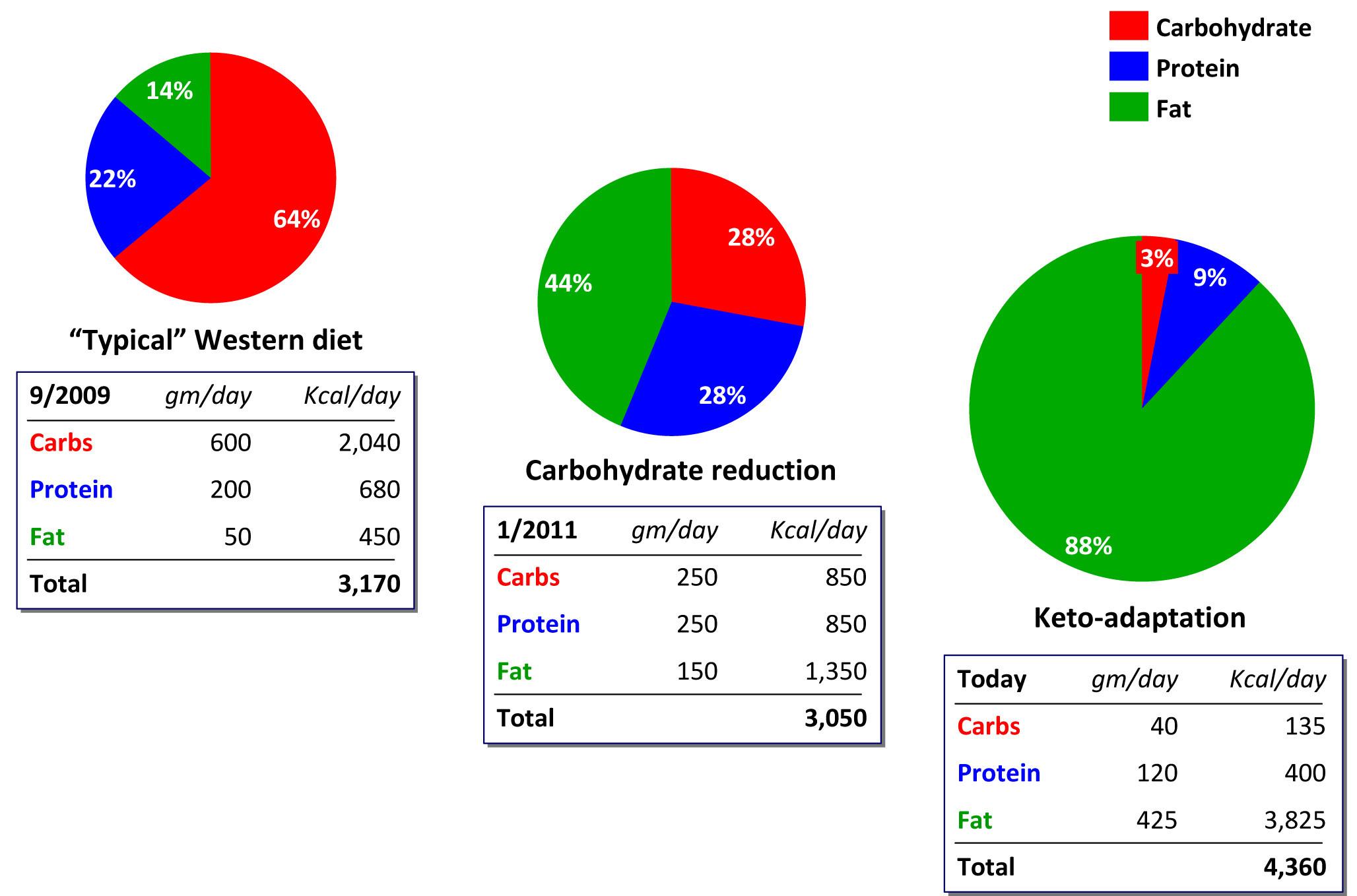 Keto Diet Percentage Chart  Greek Body Codex What is the Ketogenic Diet A Crash