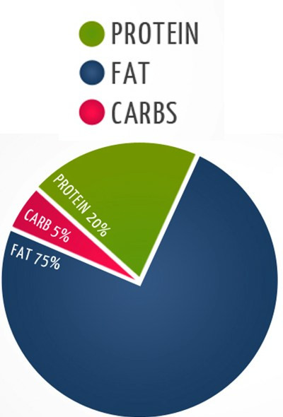 Keto Diet Percentage Chart  An Amazing Keto Diet Macros to Burn Your Fat with Healthy