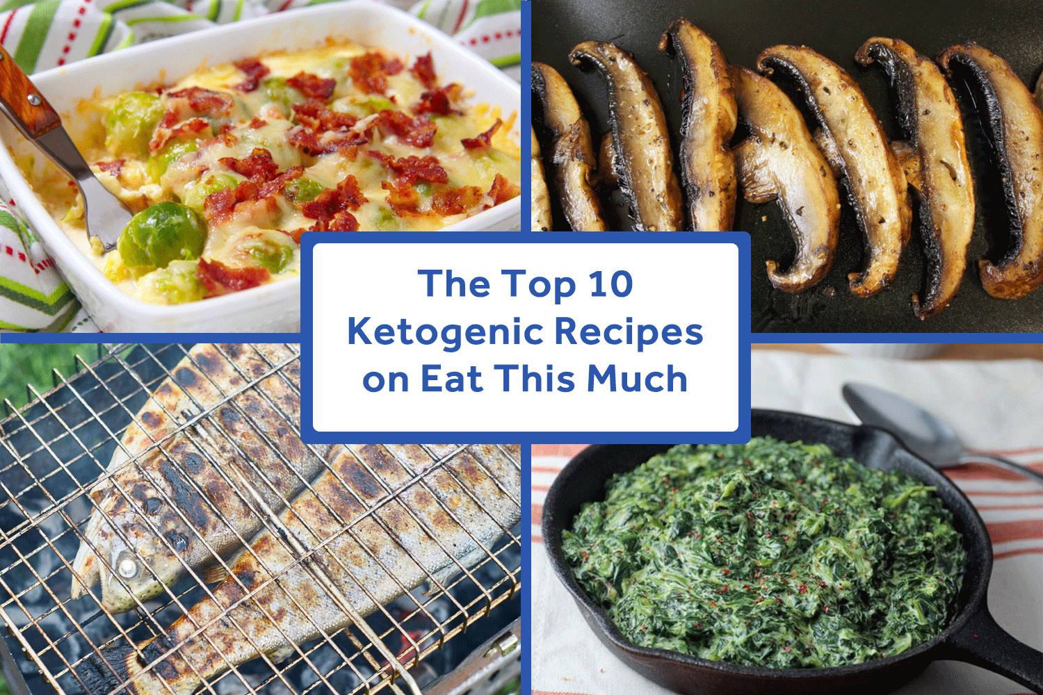 Keto Diet Recipes Free  The Top 10 Ketogenic Recipes on Eat This Much