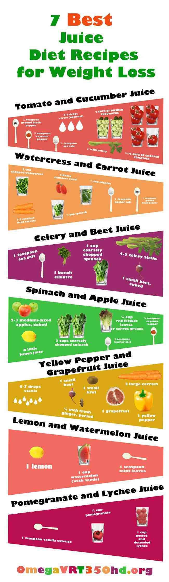 Liquid Diet Weight Loss Recipes  Juicing Recipes for Detoxing and Weight Loss MODwedding