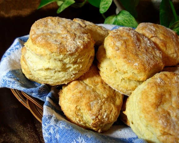 Low Calorie Biscuit Recipe  Low Fat Biscuits Ww Recipe Food