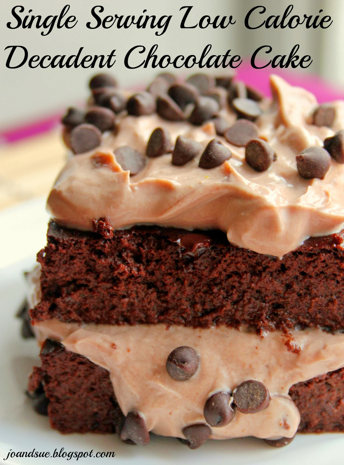 Low Calorie Chocolate Cake  Jo and Sue Single Serving Low Calorie Decadent Chocolate
