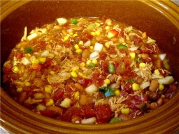 Low Calorie Crock Pot Chicken Breast Recipes  Low Fat Crock Pot Chicken Taco Soup Recipe Food