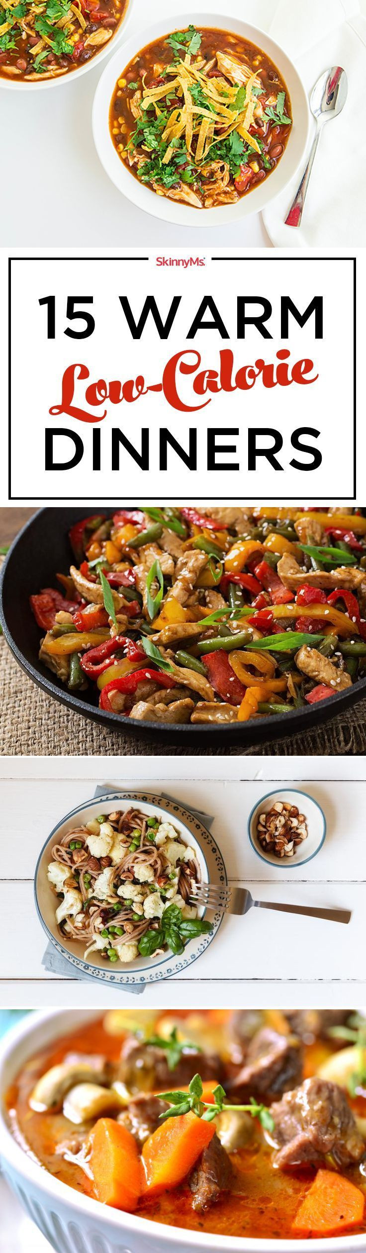 Low Calorie Dinners For Two  1240 best images about Low Calorie Options on Pinterest