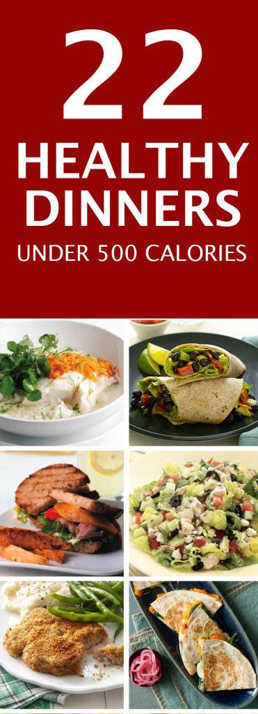 Low Calorie Dinners For Two  Best 20 500 Calorie Dinners ideas on Pinterest