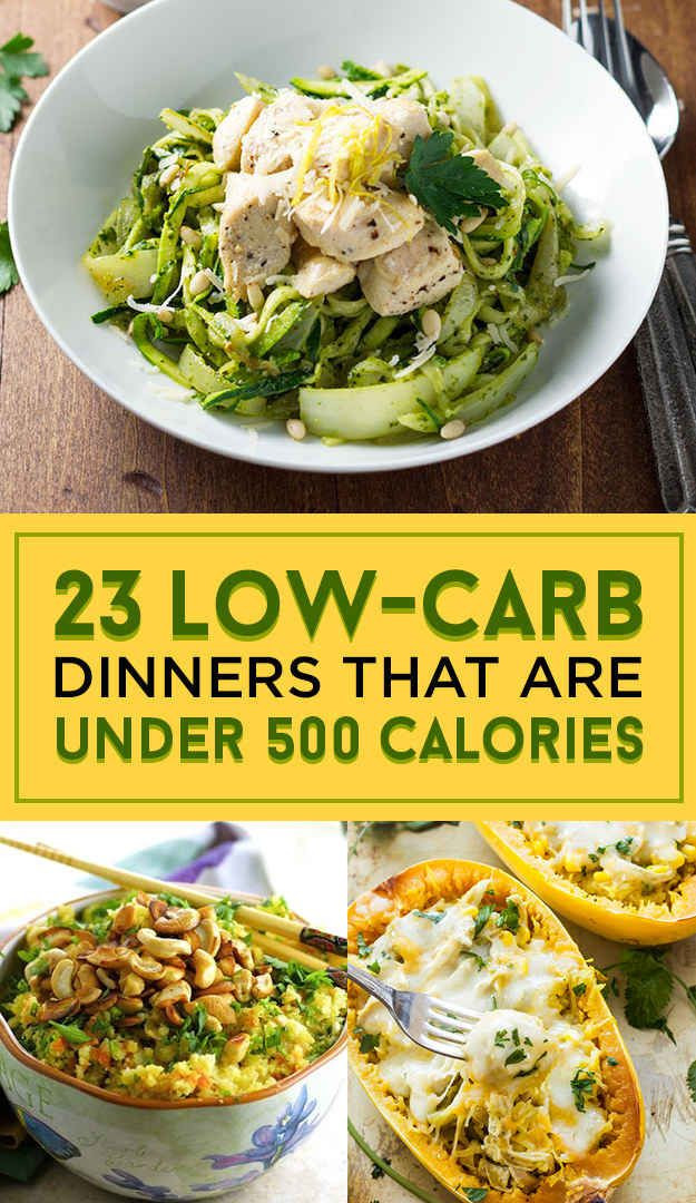 Low Calorie Dinners  23 Low Carb Dinners Under 500 Calories That Actually Look