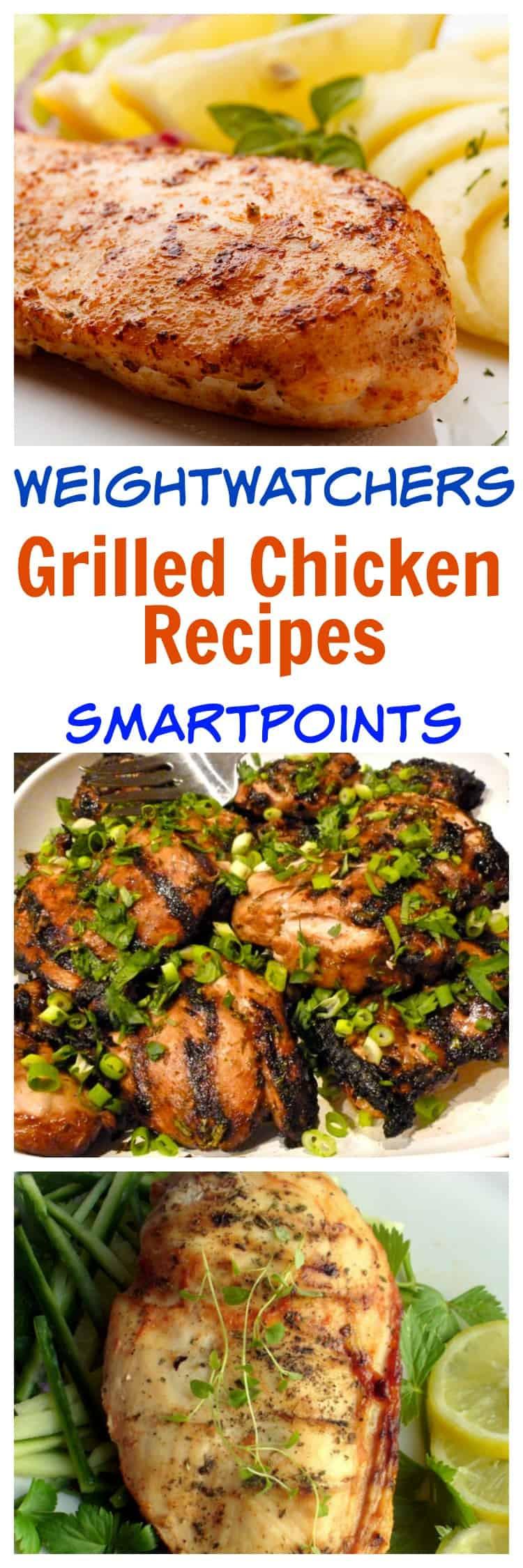 Low Calorie Grilled Chicken Recipes  27 Low Calorie Grilled Chicken Recipes