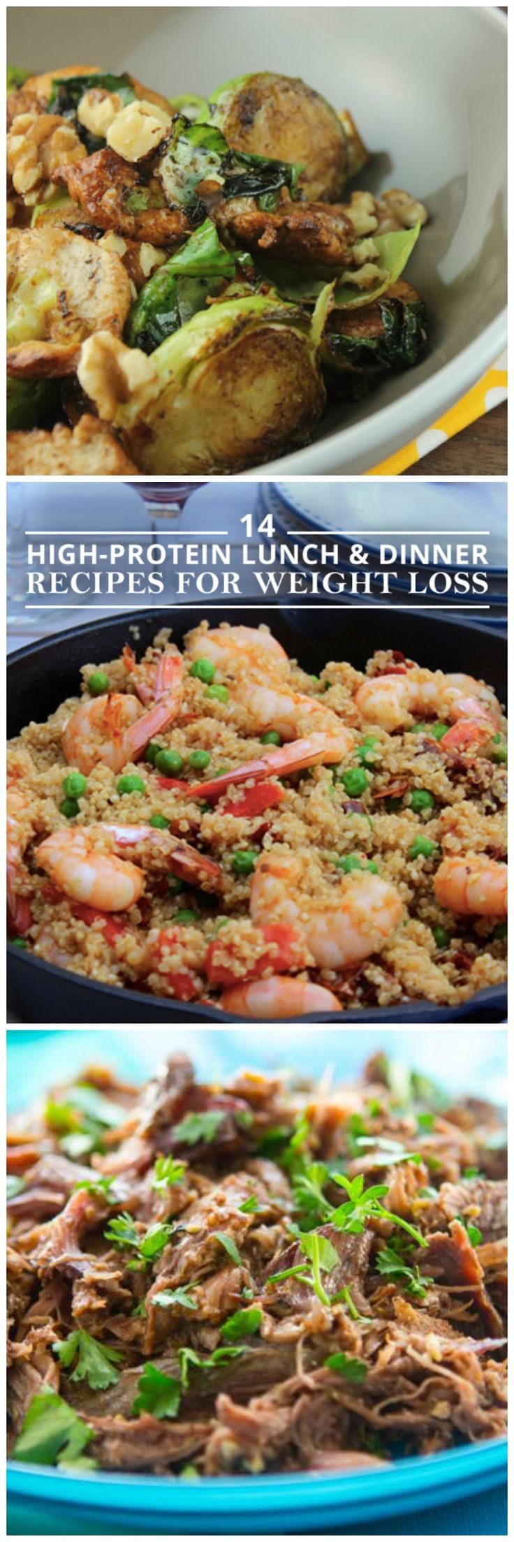 Low Calorie High Protein Recipes Weight Loss  14 High Protein Lunch and Dinner Recipes for Weight Loss