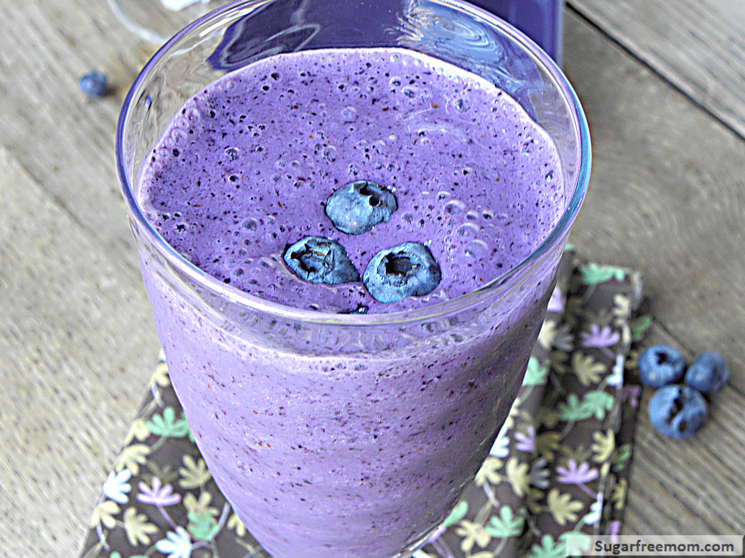 Low Calorie High Protein Smoothies  Low Fat Blueberry Protein Smoothie No Sugar Added