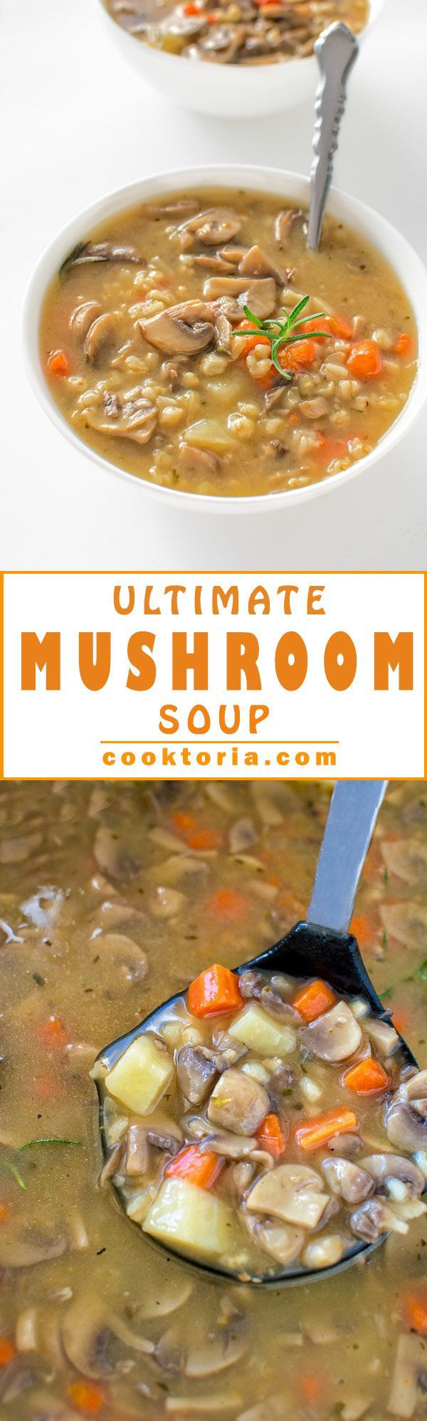Low Calorie Mushroom Recipes  Hearty and forting healthy and low calorie – this