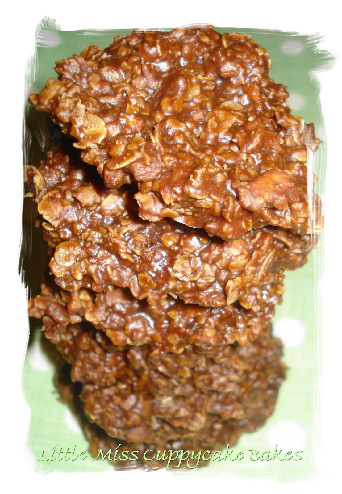 Low Calorie No Bake Cookies  Dame Good Eats Low Fat No Bake Cookies
