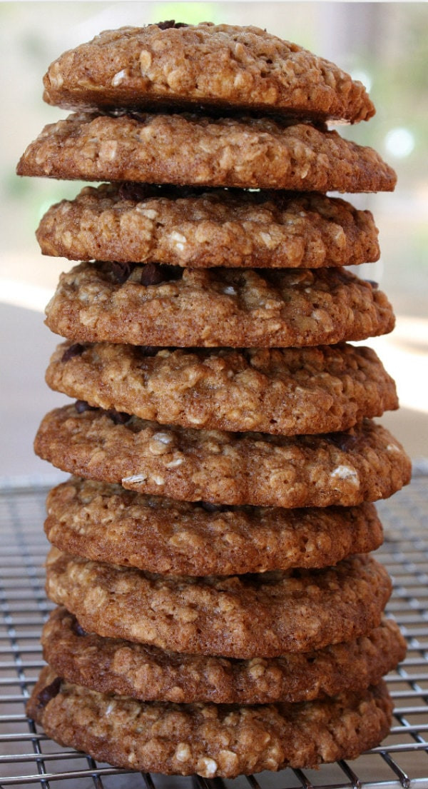 Low Calorie Oatmeal Recipes  Low Fat Oatmeal Chocolate Chip Cookies Recipe — Dishmaps