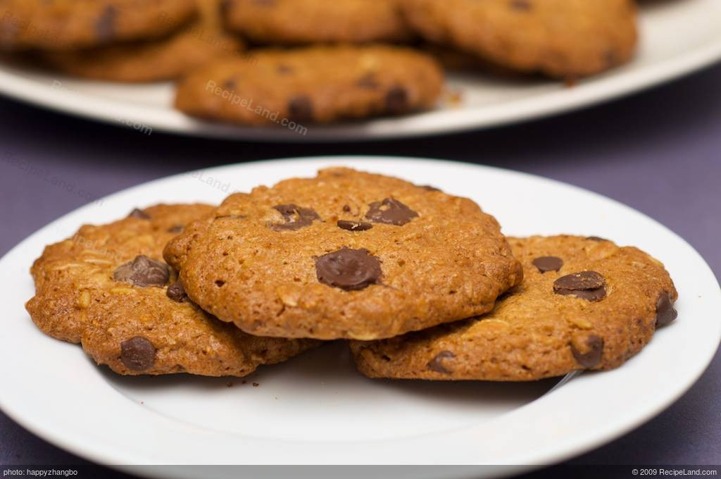 Low Calorie Oatmeal Recipes  Low Fat and Low Calorie Oatmeal Chocolate Chip Cookies Recipe