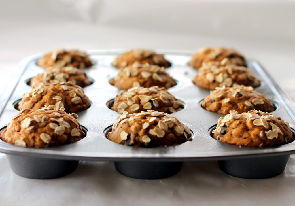 Low Calorie Oatmeal Recipes  Low fat Pumpkin Oatmeal Chocolate Chip Muffins